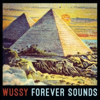 wussy_forever_sounds